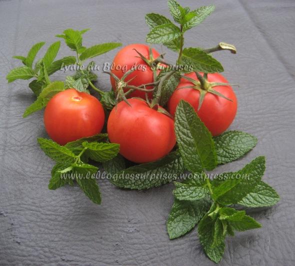 1-tomates-grappes en gazpacho solo et feuilles de menthe - FILIGRANE